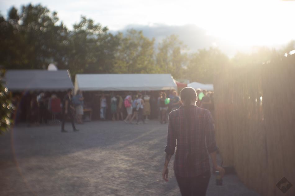 hellcow_karibikfestival_2015_0117
